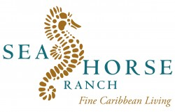 Sea Horse - Fine Caribbean Living